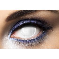Paquet de 24 bubbles BOUTEILLES champagne VERTES